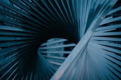 Abstract III (freyavev) Tags: blue sculpture abstract art metal germany twirl swirl mainz swirling rheinlandpfalz bluesy
