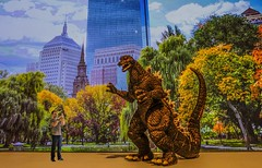 Godzilla on the Common (Rusty Russ) Tags: people usa color art scale nature up boston composite museum photoshop magazine t ma creativity photo yahoo blog google paint flickr pin all image artistic massachusetts creative young photographers commons manipulation it brush blogs godzilla national montage saturation getty salem newsroom common paysage hue essex flic peabody winners geographic bing wiki facebook wikimedia openuniversity stumbleupon daum worldskills ilri painttexture sizing reddit twitter photoscape tumblr flickriver pixelpeeper fiveprime flickrhivemind pinterest alpilo oceannetworks comflight stockpainterly
