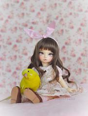 Lemon and MiNinon (Ribbonfiend) Tags: bird tiny elena budgie parakeet bjd superdollfie volks abjd yosd budgeriar