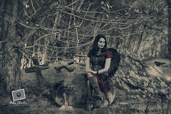 Enchanted Forest (asha_m_charles) Tags: purple