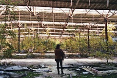 _Ancient Land_ (Corentin Schieb) Tags: camera trees friends wild woman film nature beautiful youth composition analog 35mm photography ancient friend decay exploring young free land analogue dust cinematic abandonned argentique discovering corentin filmisnotdead schieb keepexploring