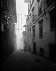 Christmas lights, fog, dusk, Via Guelfa, Cortona, Tuscany, Italy, Mamiya 645 Pro, Ilford HP5+, Moersch Eco Film Developer, late December, 2015 (steve aimone) Tags: christmas street blackandwhite italy 120 film monochrome fog mediumformat lights dusk ilfordhp5 tuscany cortona viaguelfa mamiya645pro moerschecofilmdeveloper epsonperfectionv550