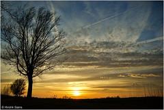 Late that Night (Hindrik S) Tags: blue sunset red sun tree nature yellow clouds zonsondergang sony natuur wolken boom beam read creation 1750 tamron geel rood zon sinne giel a300 schepping tamron1750 sonyalpha tamronspaf1750mmf28xrdiiildasphericalif skepping dslra300 300 alpha300 sonyphotographing sinnendergong