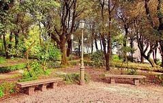 The Garden (Francesco Impellizzeri) Tags: trees italy lamp canon garden bench powershot sicily erice