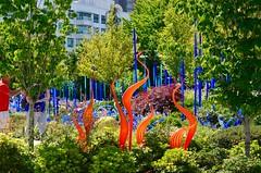 DSC_1713 (erica.hendershot) Tags: seattle chihuly tourism glass skyline garden washington place market pike pikeplace vibrantcolors seattlewashington glassexhibit chihulygardenandglass chihulygarden