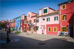 141101 burano 509 (# andrea mometti   photographia) Tags: venezia colori burano merletti