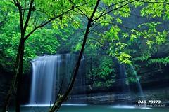 DAO-73973 (Chen Liang Dao  hyperphoto) Tags: taiwan