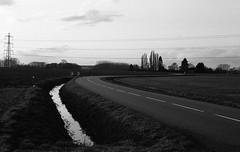 Mirage a droite (tonic_witch) Tags: blackandwhite film noiretblanc ilfordhp5plus contaxrx planart1450