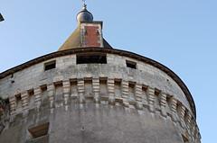 Azay-le-Ferron (Indre) (sybarite48) Tags: france tower castle torre tour indre toren castelo turm castello chteau kale  castillo burg kasteel   kule zamek     azayleferron wiea