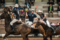 open Horse-ball (deniscoeur) Tags: cheval lumire mange intrieur jeu chevaux lumirenaturelle lumiredujour horseball f456 55250mm canon70d