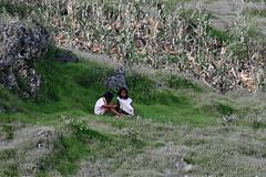 IMG_6597 (wi dodow) Tags: cerita tuban bukit anakanak kancing pesonaindonesia