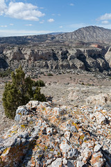 LBF_0076 (clyspe) Tags: cliff mountain tree river landscape montana rocks desert 4x4 outdoor canyon badlands wyoming scrub offroading xterra scrublands bighorncanyon