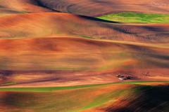 Real hills have curves (A Camera Story) Tags: sunrise washington farmland wheatfields palouse stateparks steptoebutte steptoebuttestatepark sonydslra700 sony70300mmf4556g