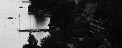 Lakeshore (David K. Marti) Tags: road street city trees houses light shadow urban bw white lake black nature wet water monochrome buildings landscape boats outside outdoors mono harbor blackwhite scenery cityscape natural outdoor widescreen shoreline scenic monotone roofs shore lakeshore