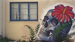 Juan Salgado...Collingwood, Melbourne... (colourourcity) Tags: streetart tattoo skull awesome melbourne hibiscus nofilters streetartmelbourne streetartaustralia burncity juansalgado colourourcity colourourcityoz colourourcitymelburn