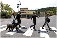 crosswalkB (tesseract33) Tags: world travel light people art dogs nikon gibsons crosswalk humans mollysreach tesseract33 peterlangphotographynet