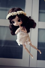 Fly on ~ (Majorkab) Tags: photography fly doll dal pullip levitate kanta dollsphotography