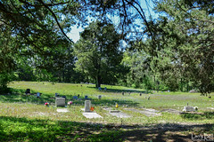 DSC_0303.jpg (SouthernPhotos@outlook.com) Tags: cemetery us unitedstates alabama sumtercounty larrybell browncemetery emelle larebel larebell