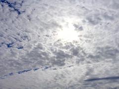 DSC01860 (johnjmurphyiii) Tags: sky usa snow clouds yard spring connecticut shelly cromwell originaljpeg johnjmurphyiii 06416 sonycybershotdsch90