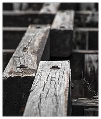 Age Lines (Pro-Zak) Tags: wood abandoned industry pier newjersey waterfront prozak urbex arthurkill coaldumper timothyvogel