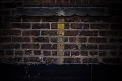 (101/366) Urban Stripe, Overcast (CarusoPhoto) Tags: city urban chicago brick wall project john lens photo holga focus day pentax stripe line plastic 365 manual caruso zone ks2 lowfi 366 hlp carusophoto