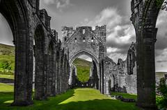 Llanthony Priory (technodean2000) Tags: uk wales nikon clone mid priory lightroom llanthony d610