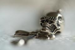 Skull (frankwinkler1969) Tags: skull sony fe totenkopf 9028