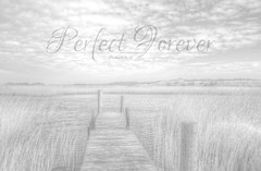 Forever (FREE-HI-RES) (Bible Verse Photo) Tags: desktop wood sky plants white house lake black mountains water monochrome clouds reeds denmark high dock perfect dynamic god background jesus group surreal 7 christian hires bible resolution forever 28 christianity range planks scripture hdr verse blavand christain 2016 newtestament hebrews 728 syddanmark hebres
