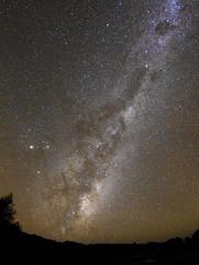 Emu running (OzzRod) Tags: stars pentax nebula astrophotography emu constellations milkyway smcpentaxda1017mmfisheye k5iis aboriginalastronomy