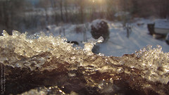 On my windowsill (Sirielle) Tags: winter snow ice field norway depth