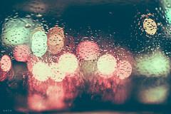 it's all wet (andidrew) Tags: digital 50mm nikon taiwan taichung af nikkor ai 50mmf14 50mmf14d d700 135digital nikonnikkordlens