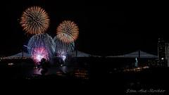 View from Coit Tower - Bay Lights Re-Lighting and Super Bowl City Fireworks Show - 013016 - 17 (Stan-the-Rocker) Tags: sanfrancisco sony coittower northbeach embarcadero ferrybuilding telegraphhill nex sanfranciscooaklandbaybridge sfobb sb50 baylights sel1855 stantherocker
