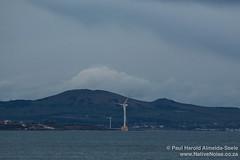 Wind Turbine in the North Sea, Scotland