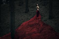 ''Repentance'' (juriskokins) Tags: red composite night forest photoshop scarlet nude woods nikon dress fineart digitalart silk 85mm story cape f18 fx darkart d610
