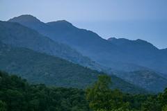 (Volvtil) Tags: chile mountain nature de los outdoor bosque cajondelmaipo cajndelmaipo brujos