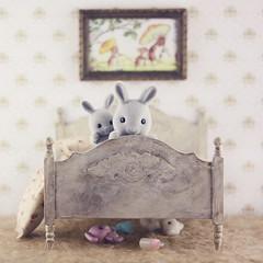 Playing with big brother (Ribonita) Tags: rabbit bunny toy miniature brinquedo coelho miniatura sylvanianfamililes