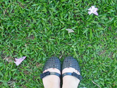 24/366 Black and green (JessicaBelotto) Tags: black flores verde green feet foto ar shots preto days honey grama preta pés ao fotografia livre pé laço fotografando sapatilha 366 366daysofhoney 366diasnoano