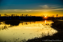 027•366 • 2016 • Colusa National Wildlife Refuge (Doug Churchill) Tags: sunset bird water beautiful beauty birds project landscape landscapes geese peace calming ducks sunsets peaceful calm enjoy wetlands romantic environment enjoys balance 365 fowl waterfowl awe habitat beauties protection enjoying balancing enjoyment pleasant wetland protect peacefulness calmness nationalwildliferefuge romantics colusa environments protecting habitats 366 protects naturalenvironment balances calms awes naturalenvironments colusanationalwildliferefuge project366 enjoyments sonyrx100m3