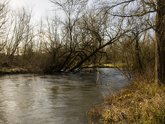 20160130-GR012939-Edit (fleetingphotons) Tags: fishing flooding ricohgr wasingestate warrenbeat