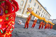 nac-10 (ICN Bastien Sittler) Tags: dragon culture asie tradition chine asiatique cultur icn nouvelanchinois