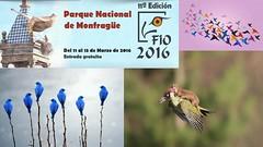 Fio 2016 (fincavillajuan) Tags: juan feria internacional villa turismo fio finca extremadura ornitologia