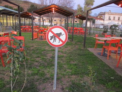 no pip (terevinci) Tags: sign cane divieto