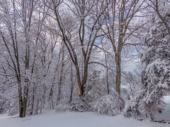 DSC01605-2 (johnjmurphyiii) Tags: winter usa snow connecticut shelly cromwell originaljpeg johnjmurphyiii 06416 sonycybershotdsch90