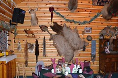 """Decorations In the Cabin after the Elk Viewing Sleigh Ride - Thunder Bay Resort, Hillman, MI (Corvair Owner) Tags: bridge trees winter horse snow cold sport mi dinner forest golf bay cabin woods day carriage ride outdoor five michigan 14 scenic resort course gourmet trail meal mich dining supper elk february drawn sleigh viewing thunder preparation hillman alpena 2016 """"snow valentine's covered"""""""