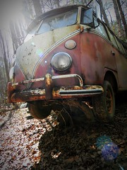 the Forgotten (Dave* Seven One) Tags: trees rot classic abandoned rotting vw forest vintage volkswagen woods junk rust decay rusty forgotten junkyard 1960s scrap decayed decaying t1 growingpains microbus rotted type2 carporn splitwindow beyondrepair transproter