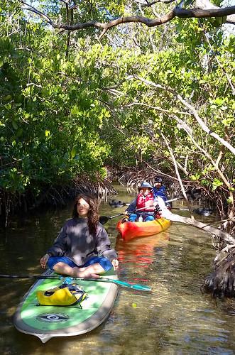 2_10_16 Kayak Paddleboard Tour Sarasota FL 13