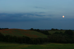 DSC04675 (wheelsy1) Tags: walking derbyshire poppy chesterfield sheepbridge poppyfield unstone richardwiles