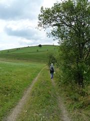 P1020084 (Marc Lamberg) Tags: de marc todtnauberg rgion halde lamberg muggenbrunn gieshbel stohren trubelsmattkopf