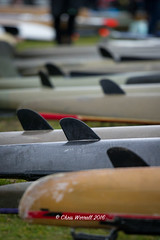 DW-16d2-1424 (Chris Worrall) Tags: boat canoe canoeing chrisworrall competition competitor day2 dw2016 devizestowestminster dramatic drop exciting kayak marathon power river speed splash spray water watersport wave action sport worrall theenglishcraftsman