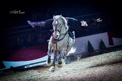 Jeol (artsuephotographie) Tags: show horses nature animals cheval spectacle voltige jeol